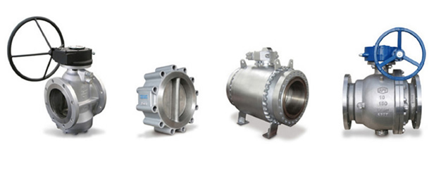 Valves & Actuators_<br />APV Valves