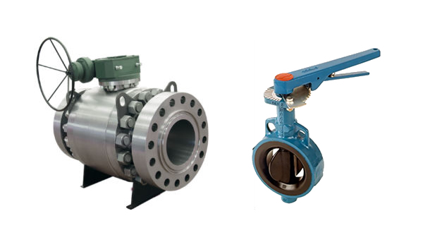Flowserve Pumps & Valves_Valves